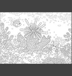 sea urchin fish and crab vector image