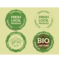 Summer Farm Fresh branding identity elements Logo vector image