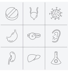 Virus tablet and stomach organ icons vector image