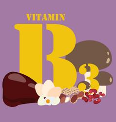 Vitamin b3 healthy nutrient rich food vector
