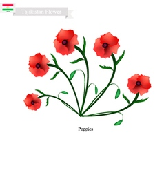 Red Poppies The Popular Flower of Tajikistan vector image