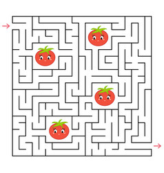 a square labyrinth collect all tomatoes and vector image