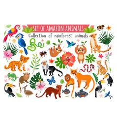 An amazon rainforest jungle animals set vector