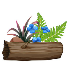Blue flowers and wooden log on white background vector