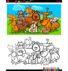 cats and dogs characters group coloring book vector image