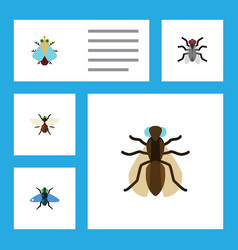 Flat icon housefly set of tiny mosquito dung and vector