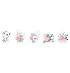 floral bouquet design garden pink orchid flower vector image