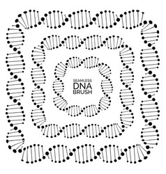 Human dna chain or genome helix molecule seamless vector