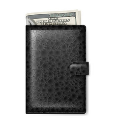 black leather wallet with dollars on white vector image vector image
