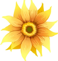A yellow flower vector image