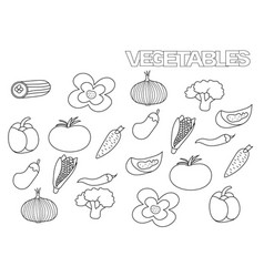 hand drawn vegetables set coloring book page vector image vector image