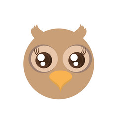 kawaii face owl animal fun vector image vector image