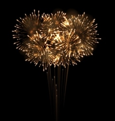 Festive Grandiose Firework Explode Bursting vector image vector image