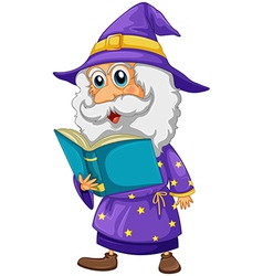 A wizard holding a book vector image