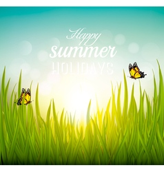 Beautiful summer background with grass and vector image