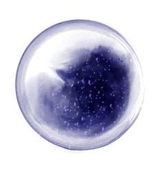 dark blue circle splash brush watercolor vector image
