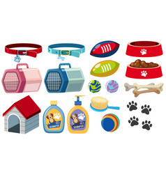 different dog accessories on white background vector image