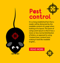 Flyer pest and rodent control banner with your vector