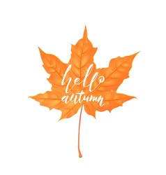 Hand drawn lettering of a phrase Hello Autumn vector