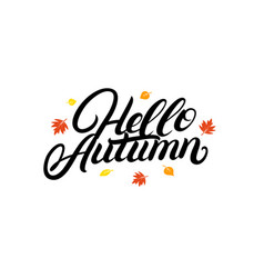 Hello autumn hand written lettering with falling vector