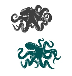Octopus with waving tentacles vector image