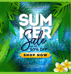 summer sale design with tropical palm leaves and vector image