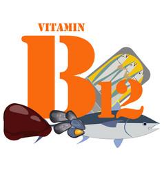 Vitamin b12 healthy nutrient rich food vector