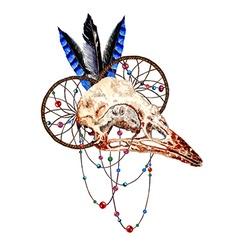 Bird Skull3 vector image