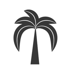 outline palm tree beach tropical vector image