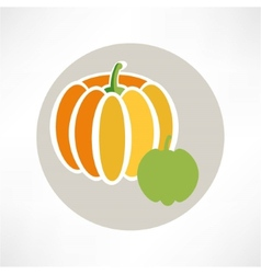 Pumpkin isolated over white vector image