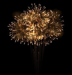 Realistic Fireworks Exploding in the Night Sky vector image vector image