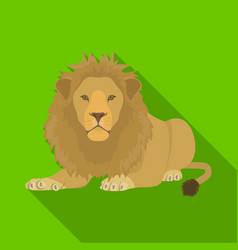 A lion a wild and ferocious predator leo the vector