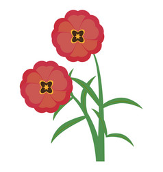 Beautiful flowers ornament vector