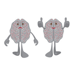 Brains in a stress and brains full energy vector