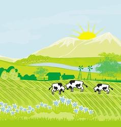 Cows grazing in green meadow vector