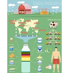Infographics dairy industry vector image