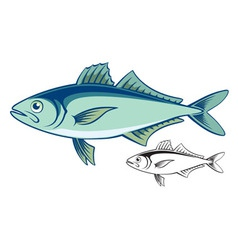 mackerel vector image