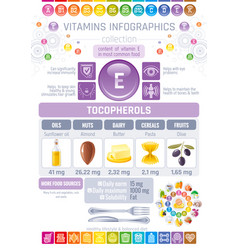 vitamin e food icons healthy eating text letter vector image vector image