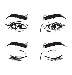 isolated black and white beautiful female eyes set vector image vector image