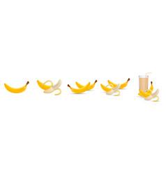 banana fresh banana fruits banana juice vector image