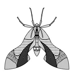 Bug hand drawn insects vector