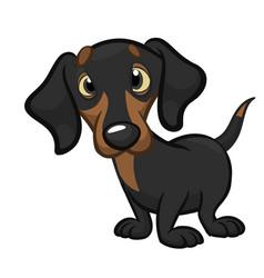 Cartoon cute dachshund dog vector