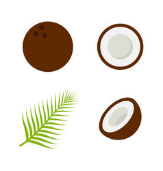 coconut icon flat style eps10 vector image