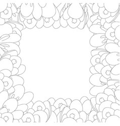crocus flower outline border vector image