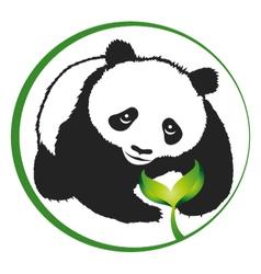 Eco panda vector