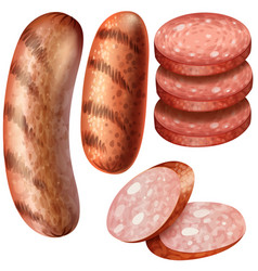 grilled sausages on white background vector image
