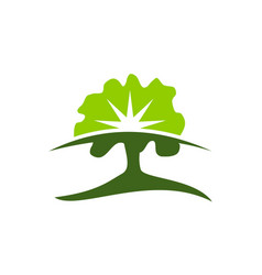 tree conservation template vector image