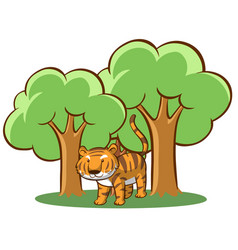 wild tiger in forest vector image