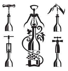 bottles collection vector image