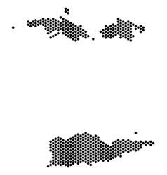 Hexagon usa virgin islands map vector